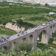 La vía Verde del Aceite en Jaén