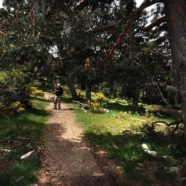 Excursión por Cuerda de La Carrasqueta