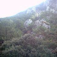Excursión por la Sierra de Huétor