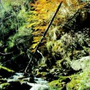 Una excursión por las cascadas y cumbres de Cebollera
