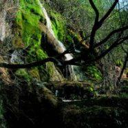 Una excursión al nacimiento del río Cuervo